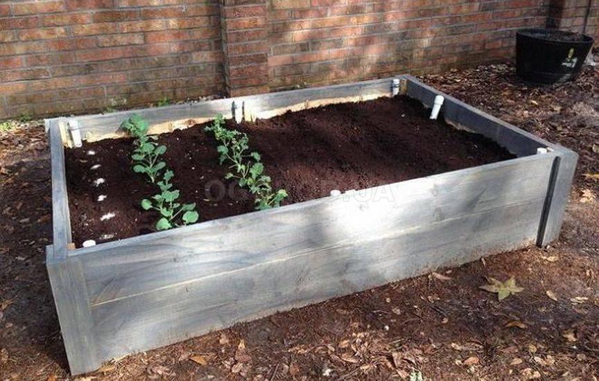 Как правильно подкармливать растения компостом
