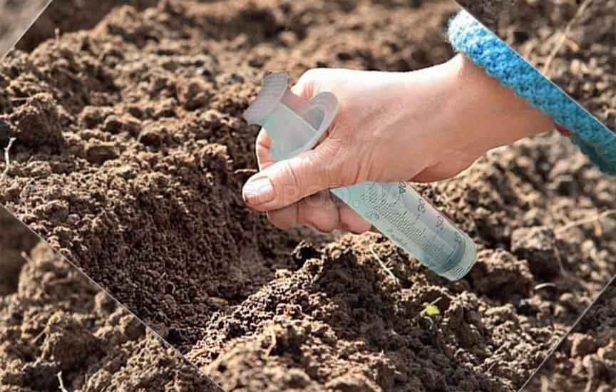 Как сажать мелкие семена 20
