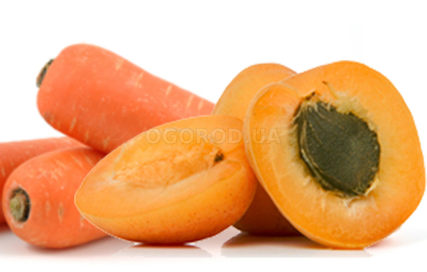 Абрикосы в морковно-лимонном соке без сахара