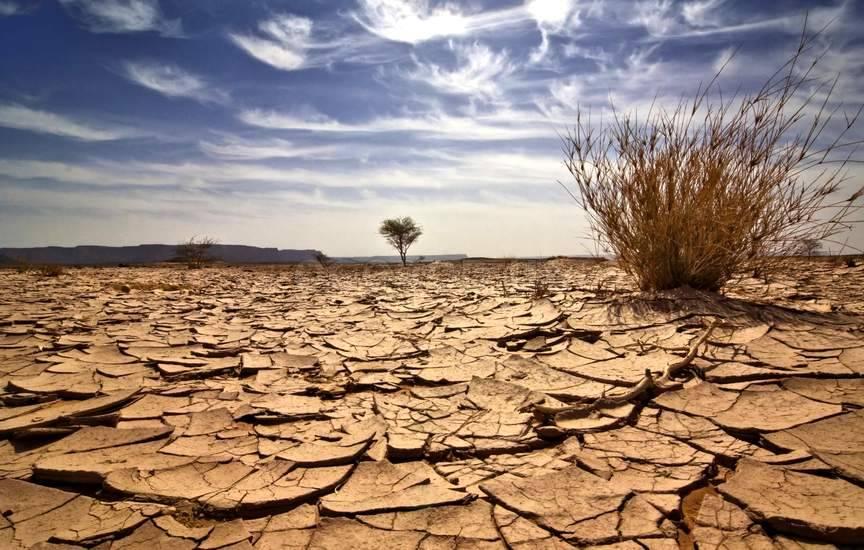 Спасение от засухи