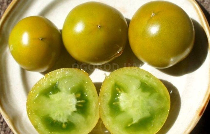 Томат «Lime Green Salad» (Зеленый Лайм салат)