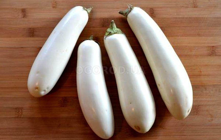 Белые баклажаны - описание сортов