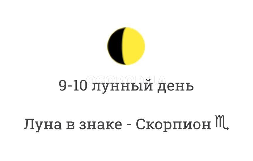 Диета 9 лунный день