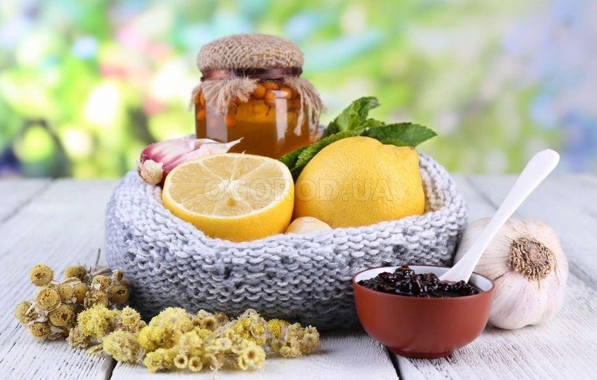 Лечение золотарником в домашних условиях