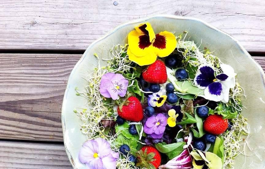 Съедобные цветы для украшения блюд