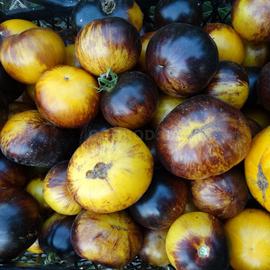 Семена томата «Stripes of Yore» (Полосы былого)