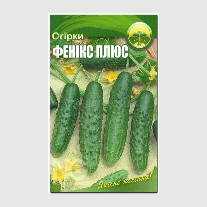 Картинки пакетика семян огурец