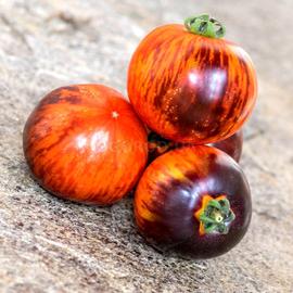Семена томата «Antho Striped Dwarf» (Карлик Анто Полосатый)