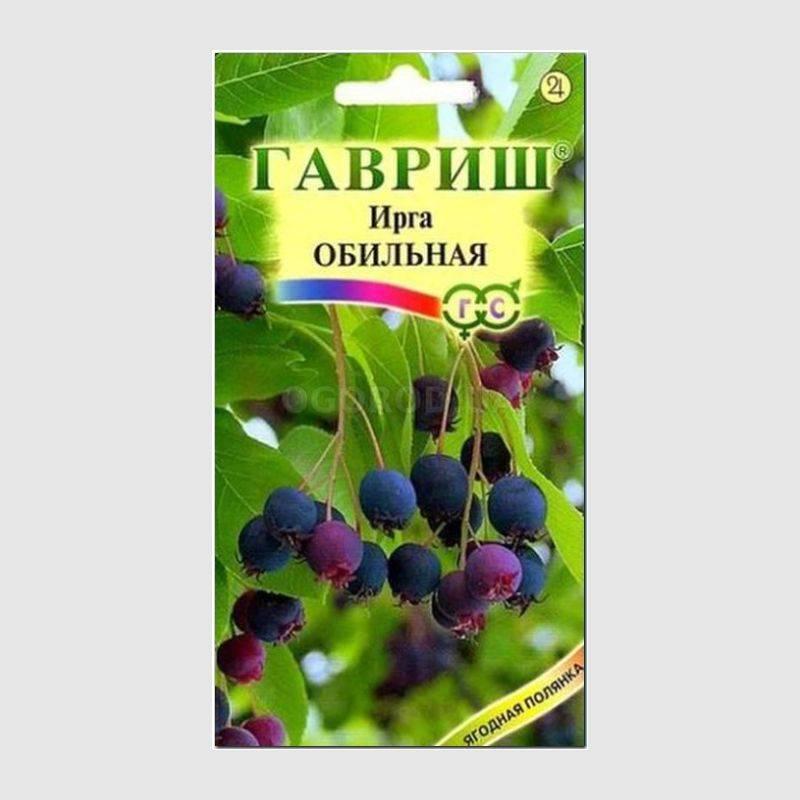 Цветы ирги купить в днепропетровске, букеты