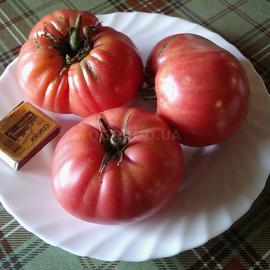 """Семена томата """"Японский краб"""""""