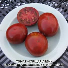 """Семена томата """"Спящая леди"""""""