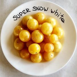 """Семена томата """"Супер Снов Вайт"""""""