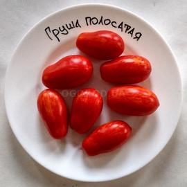 """Семена томата """"Грушка полосатая"""" F1"""