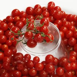 """Семена томата """"Красная смородина"""" F1"""