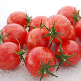 Семена томата «Pink Bumble Bee» (Пинк Бамбл Би)