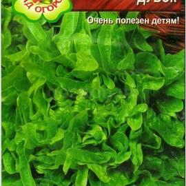 Сорта салатов с и описанием