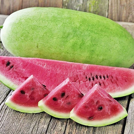 Семена арбуза Чарльстон Грей / Charleston Gray, ТМ Clause Tezier - 10 семян